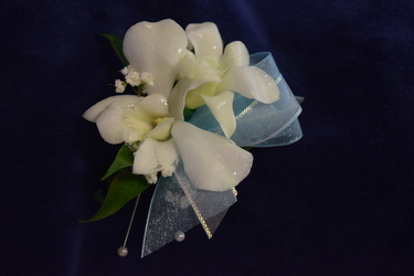 Dendrobium Orchid Boutonniere from Amy's Flowers and Gifts in Sparks, NV