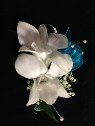Orchid Boutonniere from Amy's Flowers and Gifts in Sparks, NV