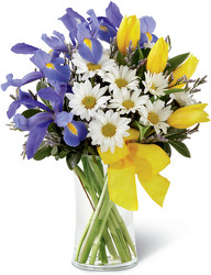 The Sunshine Style Bouquet by Better Homes and Gardens from Amy's Flowers and Gifts in Sparks, NV