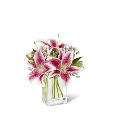 Pink Stargazer Lily Bouquet from Amy's Flowers and Gifts in Sparks, NV