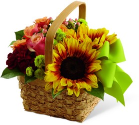 The Bright Day Basket from Amy's Flowers and Gifts in Sparks, NV
